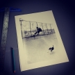 Screen printed skate photo